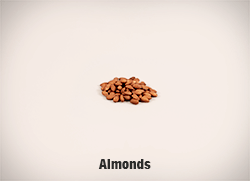 5337-Almonds-cropped-full-res copy