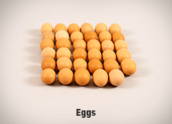 XXXX-Eggs-v2-cropped-full-res copy