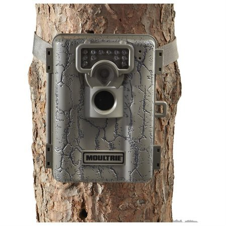 Setting up the Moultrie Game Camera - YouTube