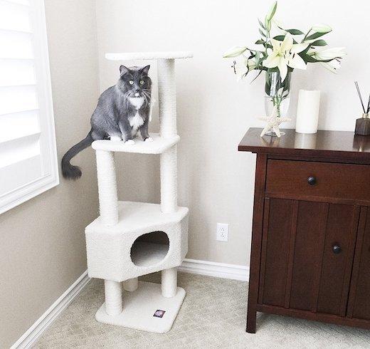 modern cat trees