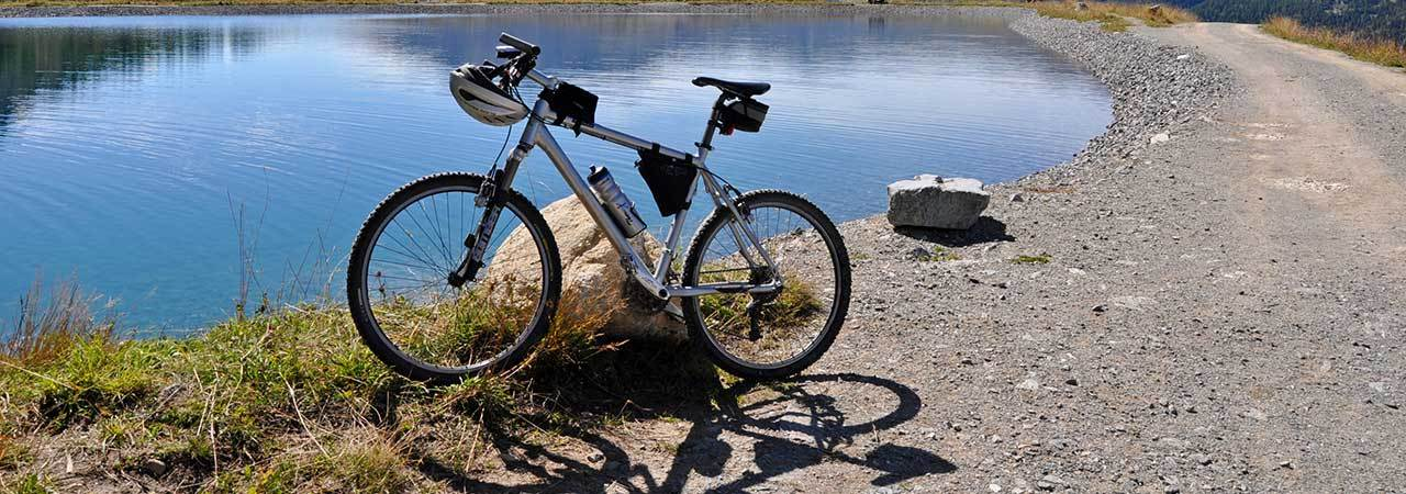 5 Best Gravel Bikes - Aug  2019 - BestReviews