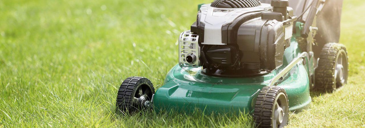 5 Best Gas Lawn Mowers - Sept  2019 - BestReviews