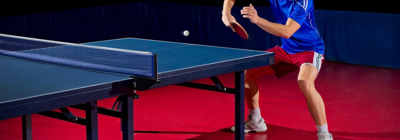 5 Best Ping Pong Tables - Aug. 2018 - BestReviews