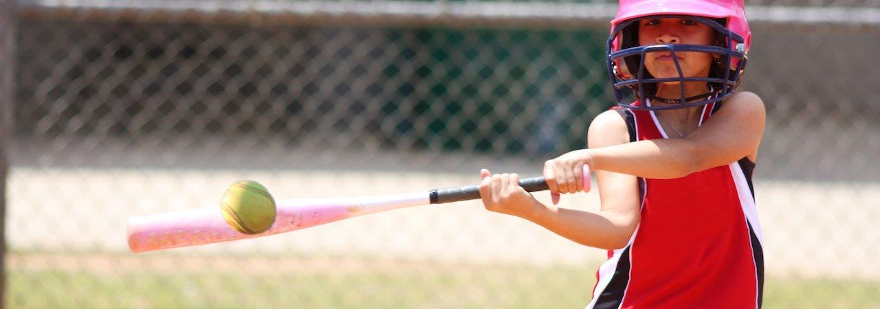 5 Best Softball Bats - Sept  2019 - BestReviews