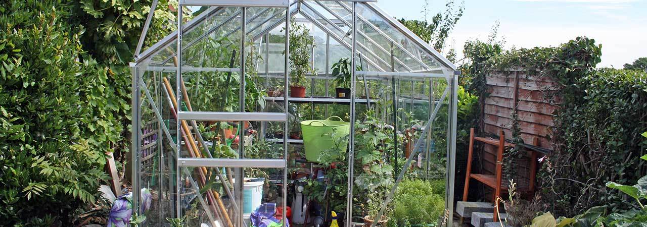 Best Greenhouses
