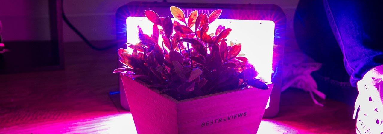 5 Best LED Grow Lights - Sept  2019 - BestReviews