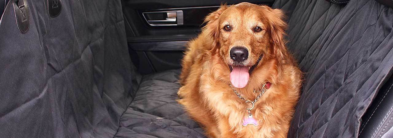 5 Best Car Seat Covers For Pets