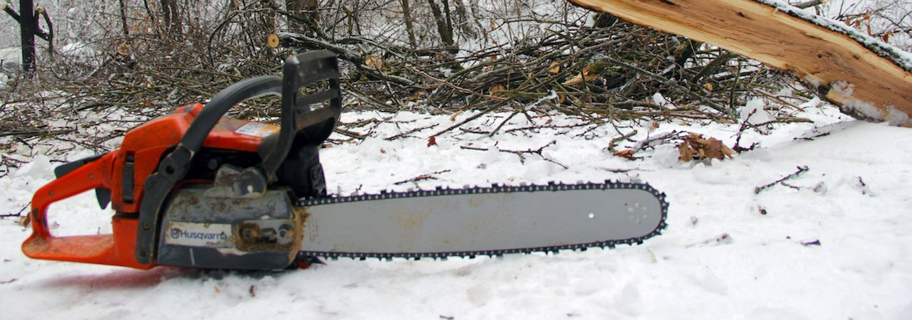 5 best husqvarna chainsaws june 2018 bestreviews greentooth Image collections