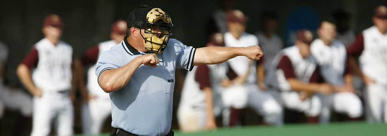 4d110bc160e4 5 Best Umpire Masks - May 2019 - BestReviews
