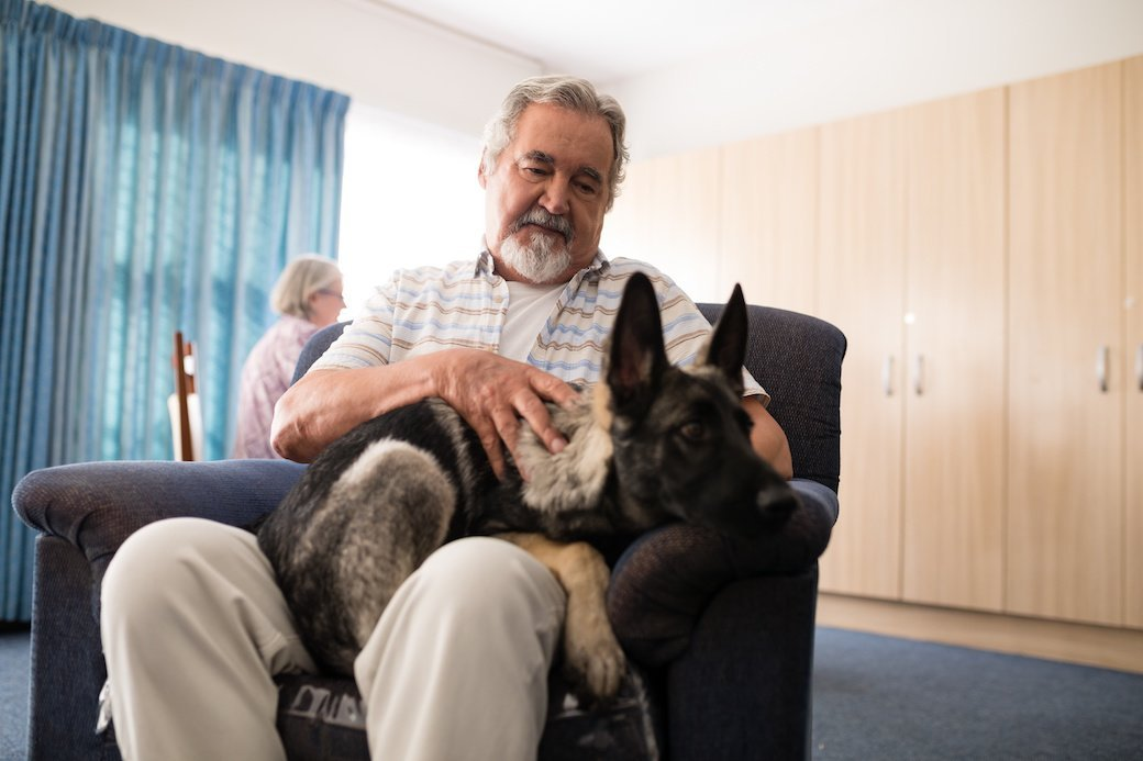 A grey haired man with tidy beard sits in a dark colored recliner with a German Shepherd Dog on his lap. In the background, the carpet on the floor is dark blue, the wall is covered with light wood cabinets, and a lighter blue curtain covers a large, bright window.