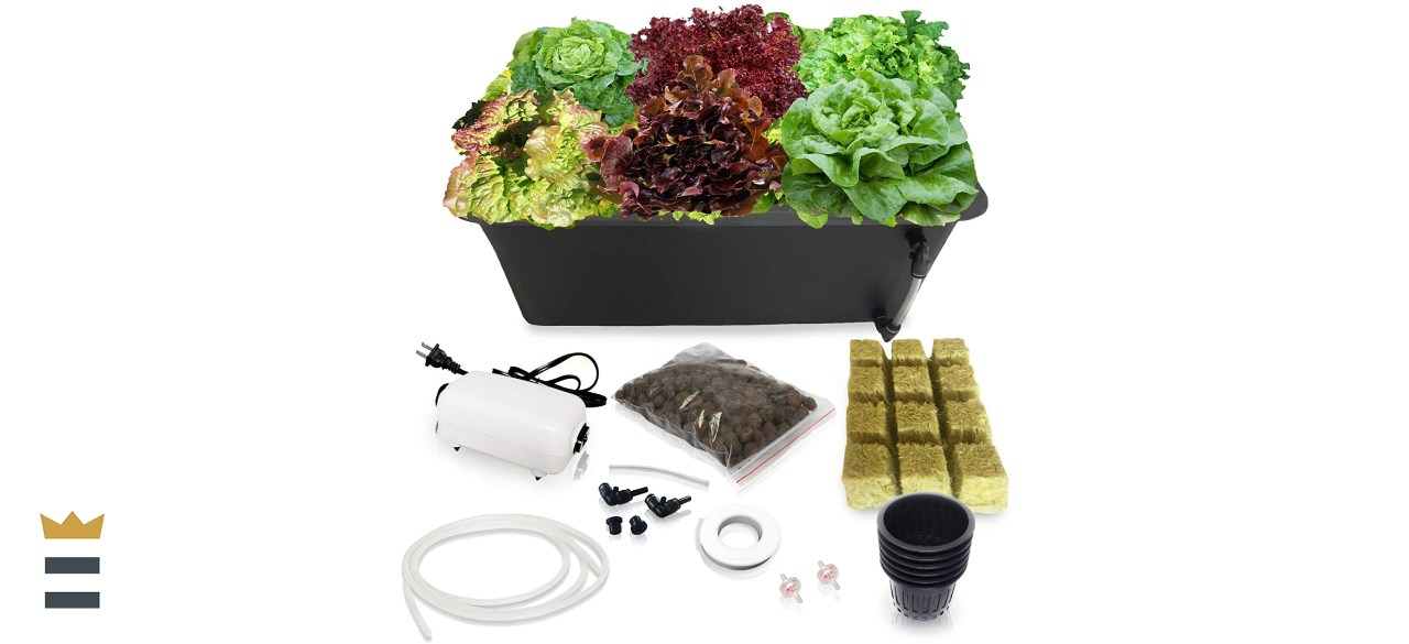 SavvyGrow DWC Hydroponics Growing System
