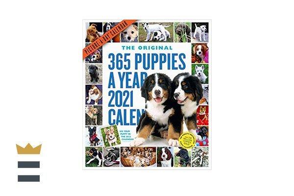 365 Puppies