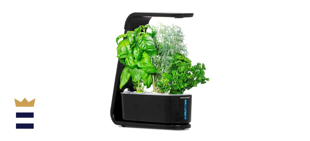 AeroGarden Sprout