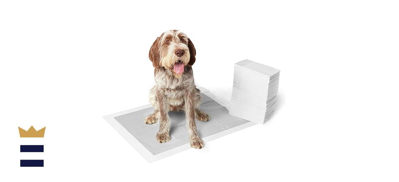 Amazon Basics Odor-Control Puppy Pads