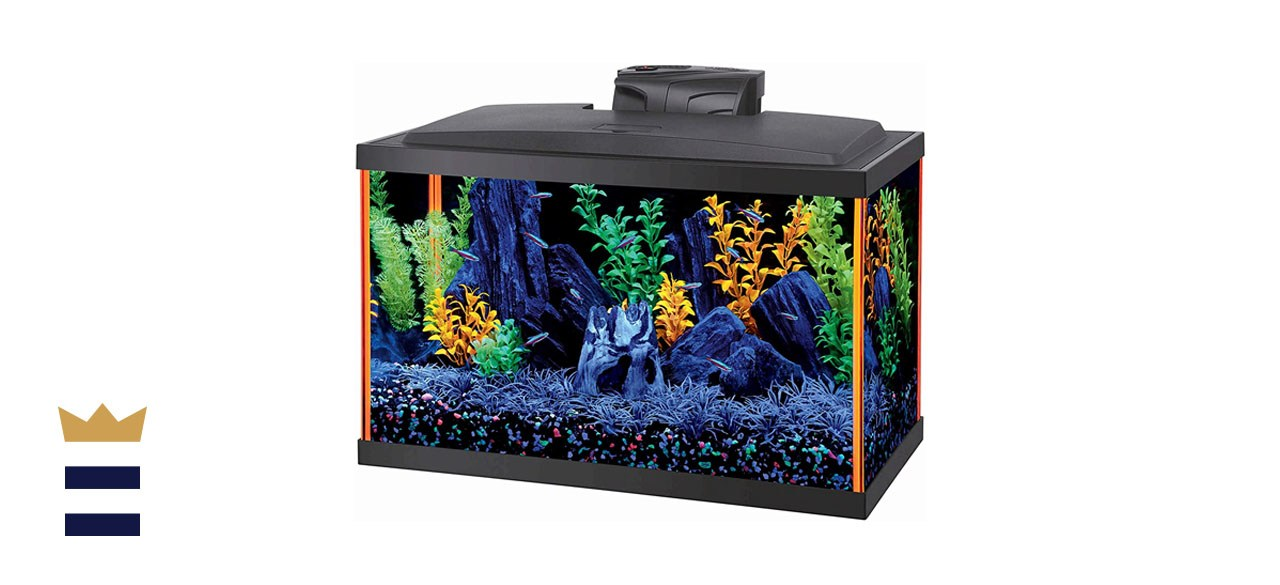 Aqueon NeoGlow Fish Aquarium Starter Kit