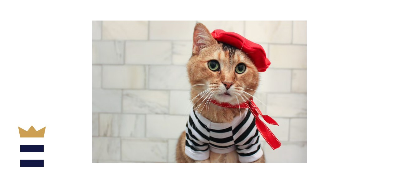 AristocatHats Complete French Cat Outfit