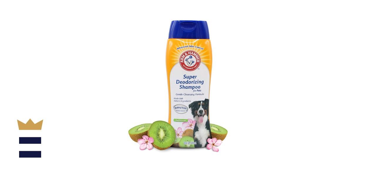 Arm & Hammer Super Deodorizing Shampoo for Dogs