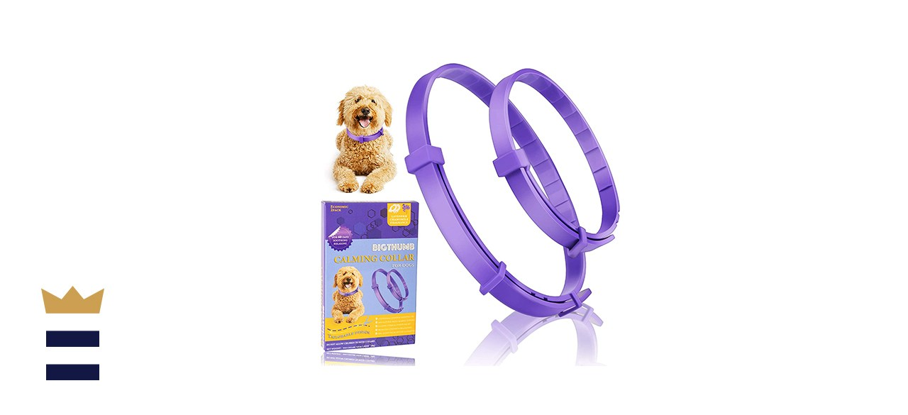Bigthumb Calming Collars for Dogs