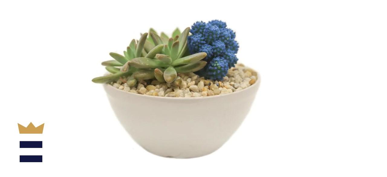 Blue Desert Gems Garden Gloss Ceramic Bowl