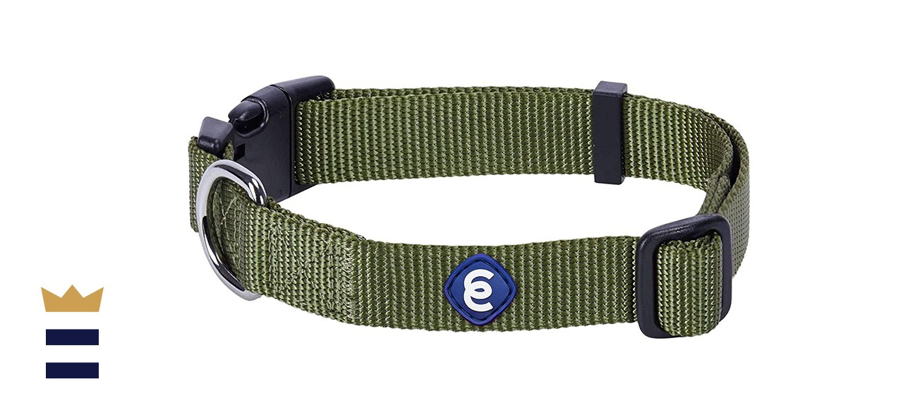 Blueberry Pet Classic Nylon Adjustable Dog Collar
