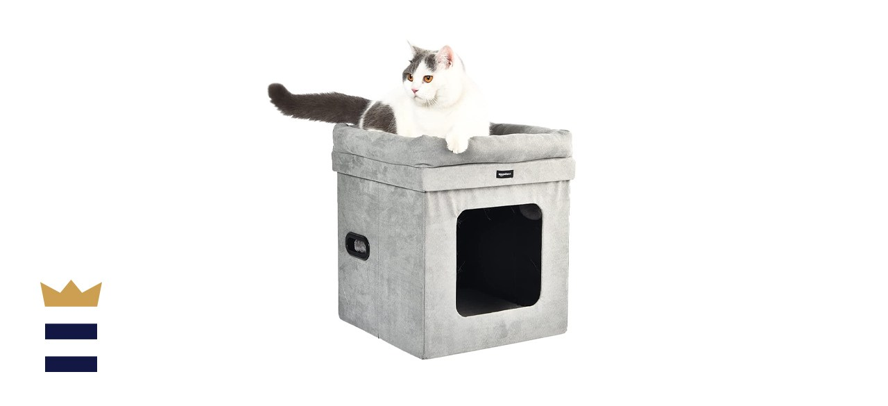 cat house with a bed
