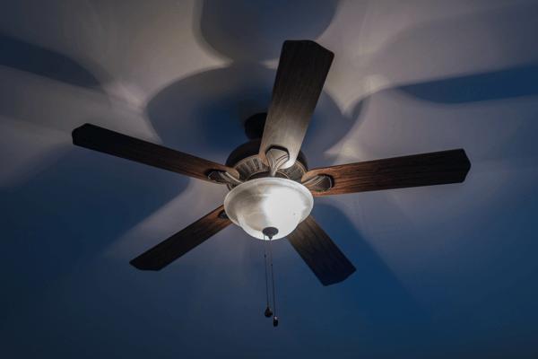 ceiling fan3