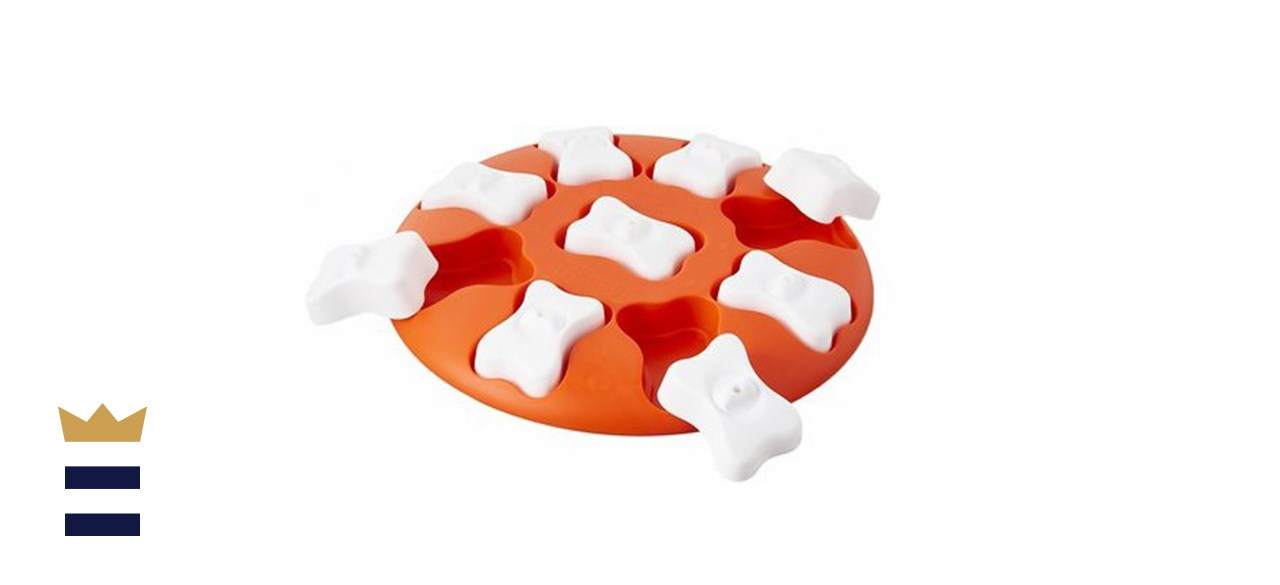 Nina Ottosson by Outward Hound Smart Puzzle Game Dog Toy
