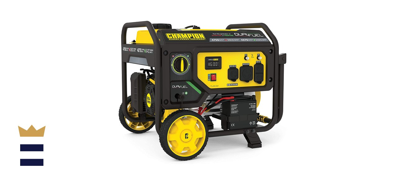 Champion Power Equipment 201052 Dual Fuel Portable Generator