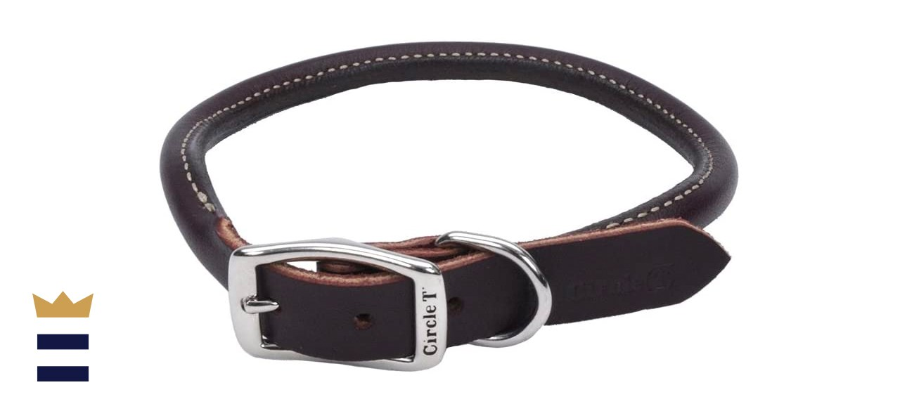 Coastal Circle T Latigo Leather Dog Collar