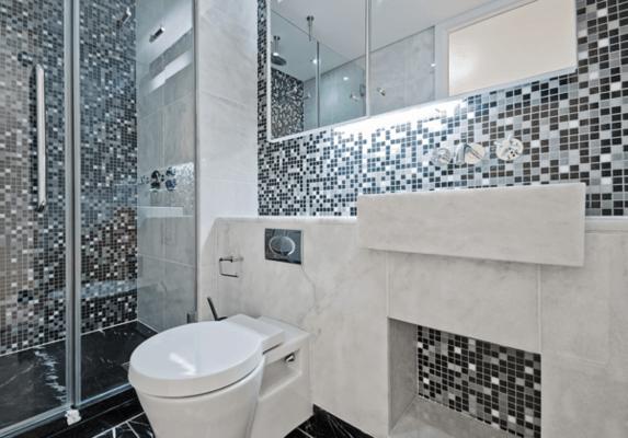 dual flush toilet1