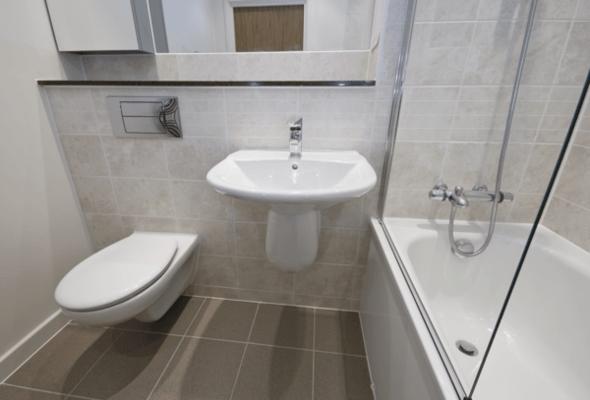 dual flush toilet2