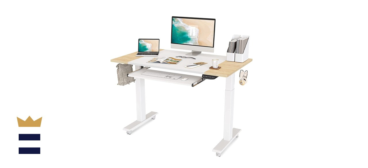 FEZIBO Dual-Motor Height-Adjustable Electric Standing Desk