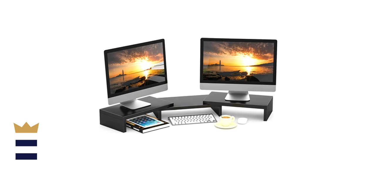 TAVR Dual Monitor Stand