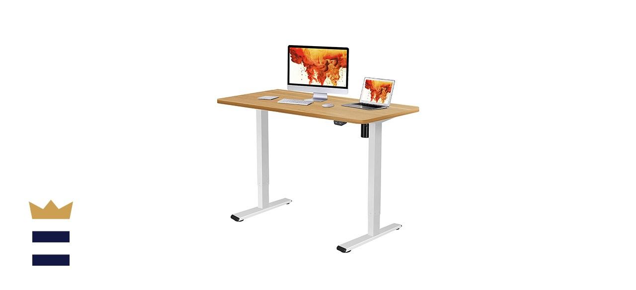 Flexispot Electric Adjustable Height Standing Desk