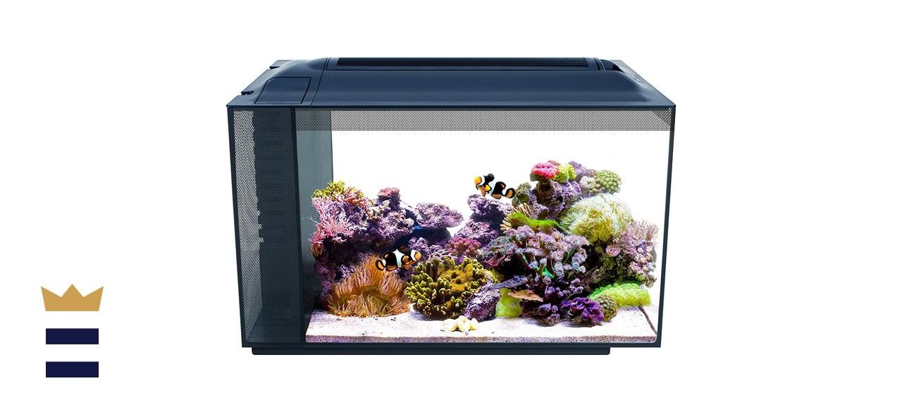 Fluval Sea Evo V Saltwater Fish Tank Aquarium Kit