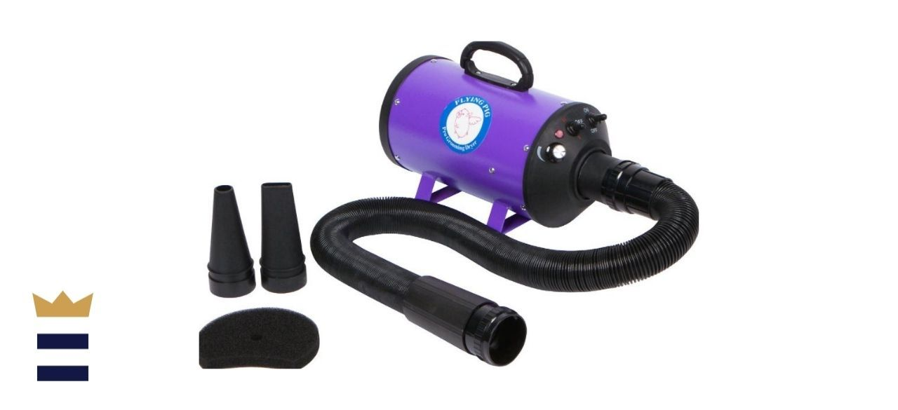 Flying Pig Grooming's High-Velocity Dog and Cat Grooming Dryer