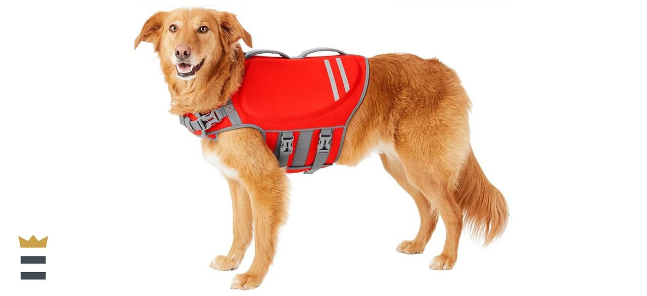 Frisco Neoprene Dog Life Jacket