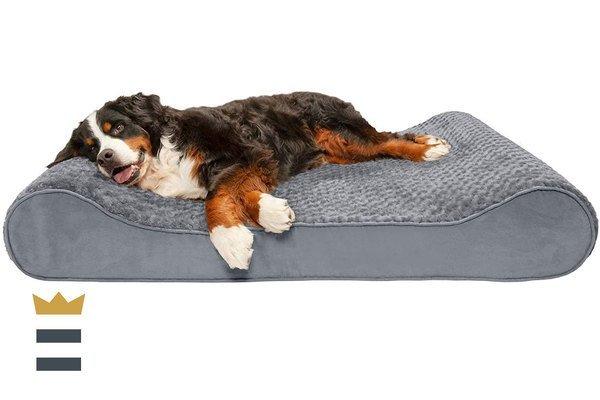 FurHaven  Dog Lounge