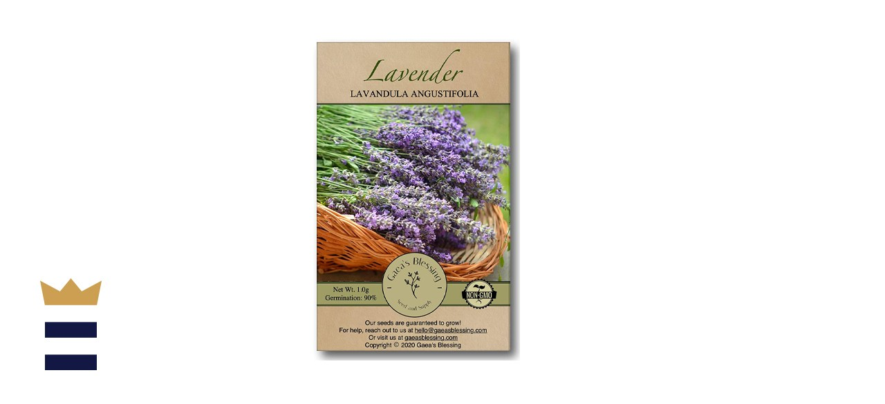 Gaea's Blessing Seeds - English Lavender Seeds
