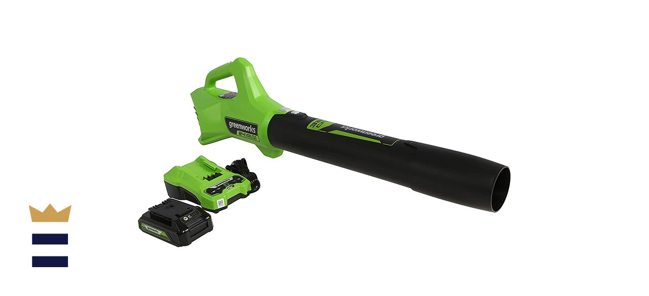 Greenworks 24V Axial Blower