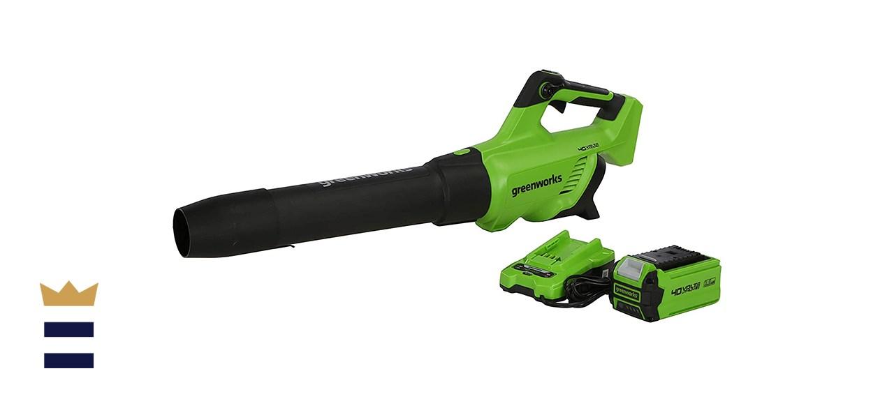 Greenworks 40V Blower