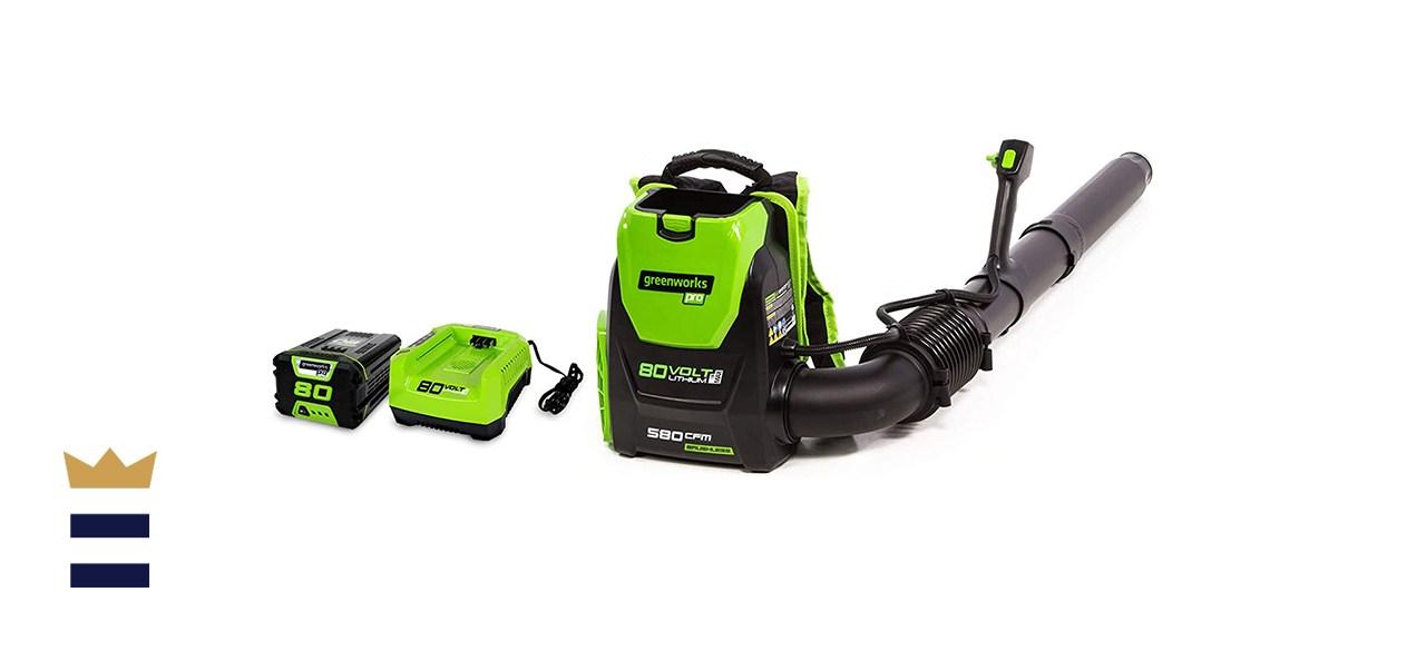 Greenworks 80V Backpack Blower