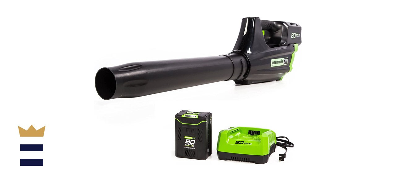 Greenworks Pro 80V Cordless Axial Leaf Blower