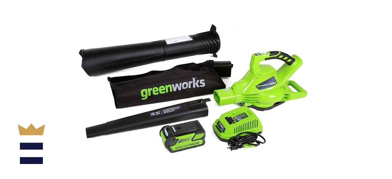 Greenworks Variable Speed Cordless Leaf Blower/Vacuum