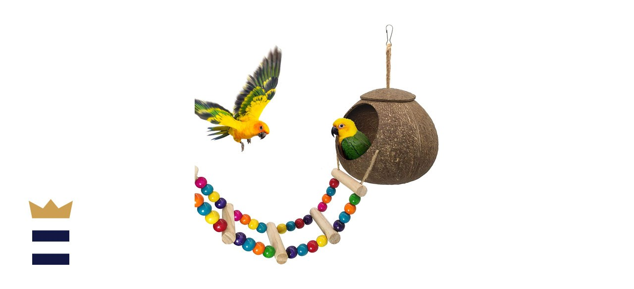 Hanging Coconut Bird House with Ladder