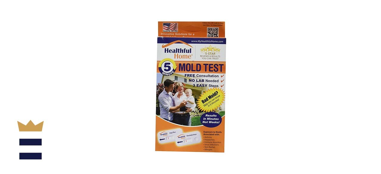 Healthful Home 5-Minute At-Home Mold Test Kit