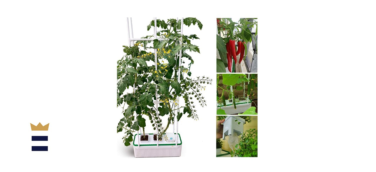 Smart Hydroponics Growing System for Indoor Gargen
