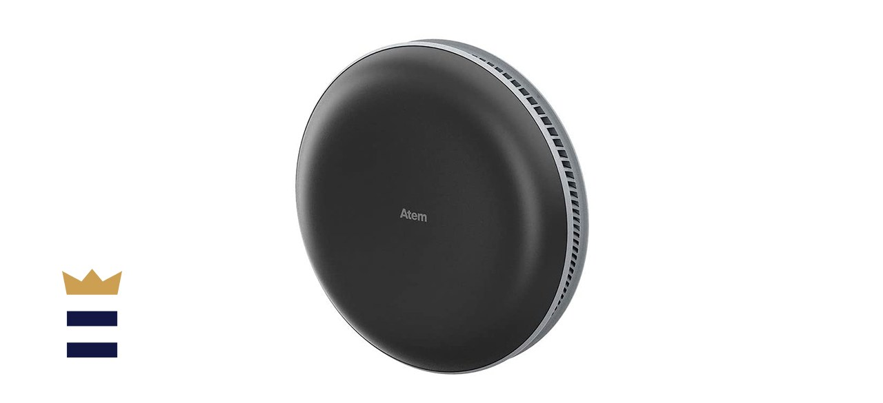 IQAir Atem Portable Air Purifier