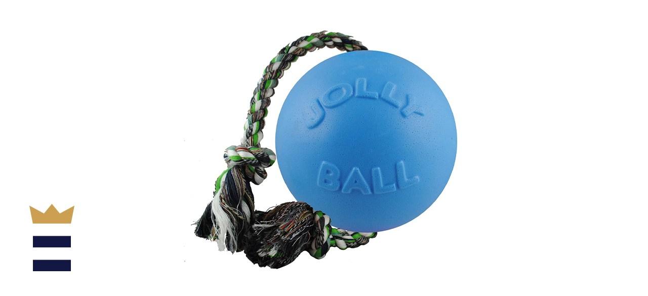 Jolly Pet Romp-n-Roll Dog Toy