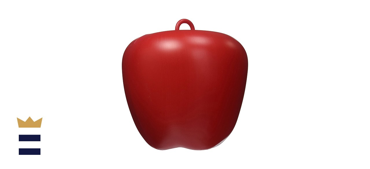 Jolly Pets Apple Toy
